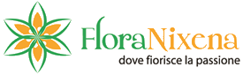 FloraNixena – Consegna fiori a domicilio