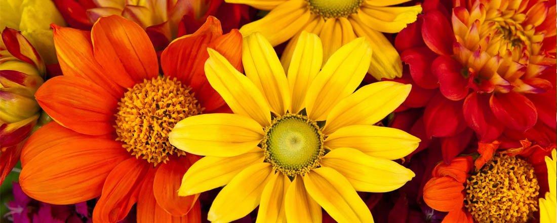 Straordinari bouquet stagionali