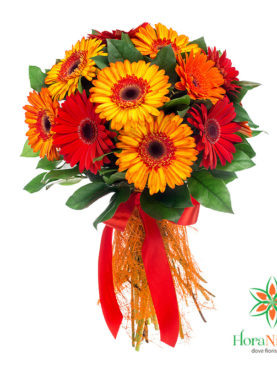 Tonic - Bouquet arancio