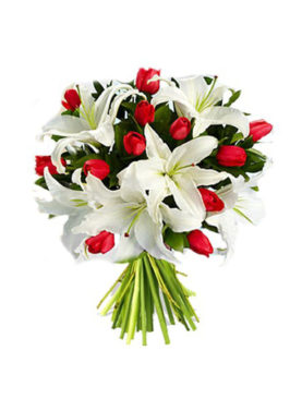 Tulipani e Lilium