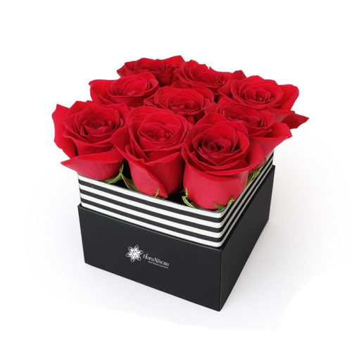 Cubo di 6 rose rosse
